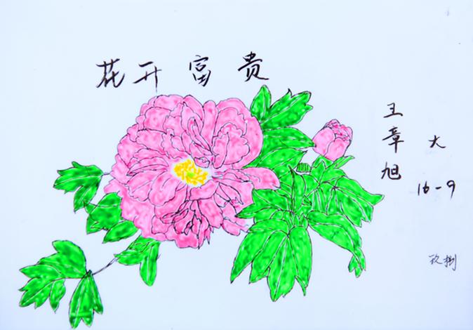 同学们的作品涵盖了山水画,人物画,花鸟画等,一幅幅果酱画