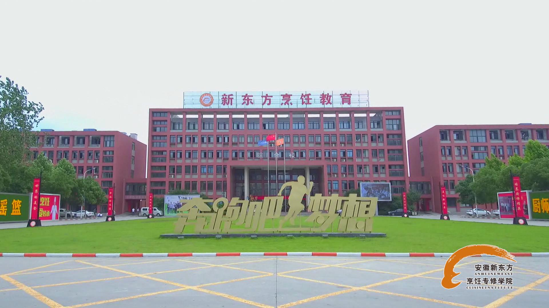 安徽新东方之专业介绍