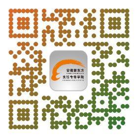 安徽新东方手机网站
